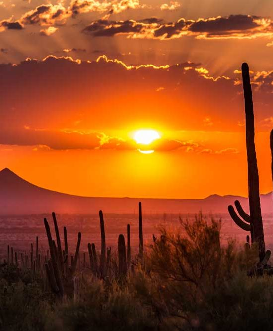 Relocating to Arizona? What's to Love and What's to Hate